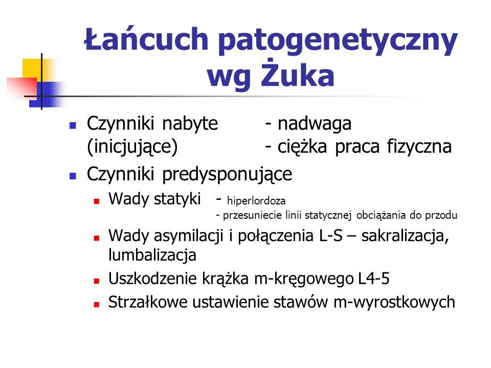 Łańcuch patogenetyczny wg Żuka