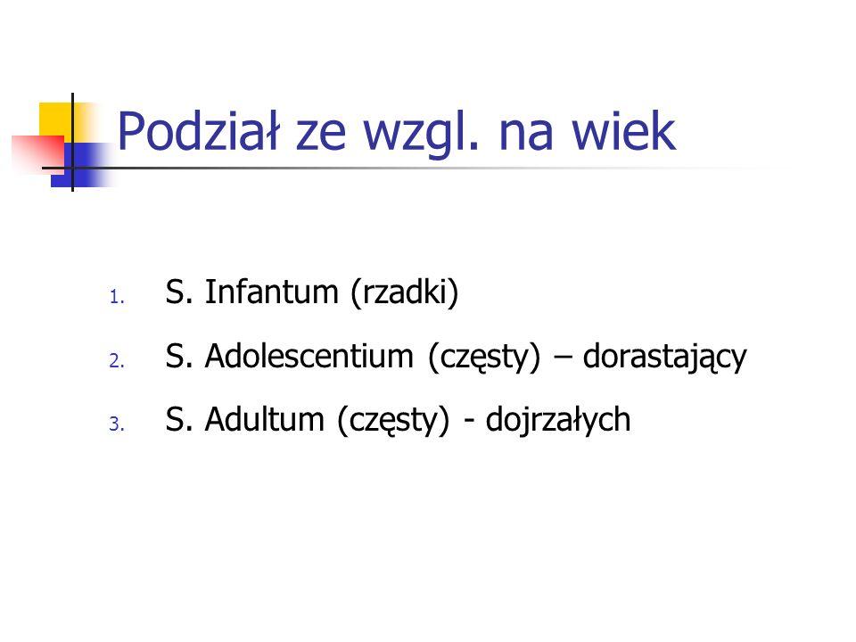 Podział ze wzgl. na wiek S. Infantum (rzadki)