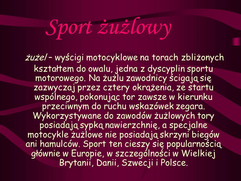 Sport żużlowy