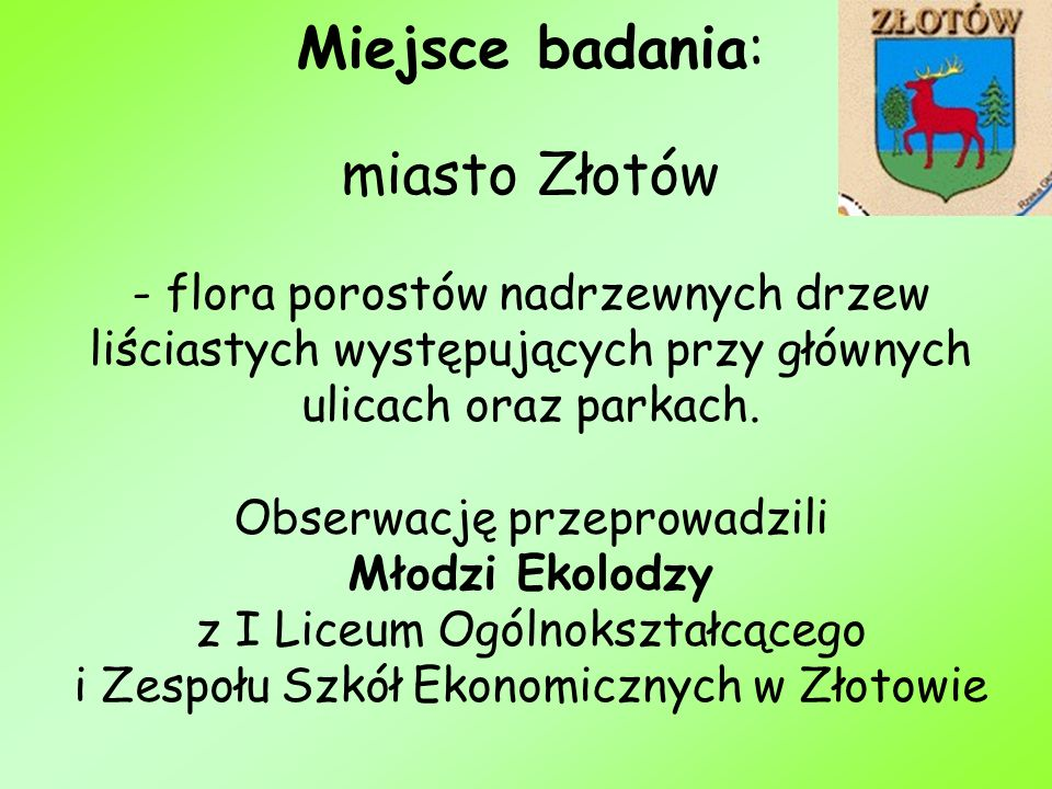 Miejsce badania: miasto Złotów - flora porostów nadrzewnych drzew liściastych występujących przy głównych ulicach oraz parkach.