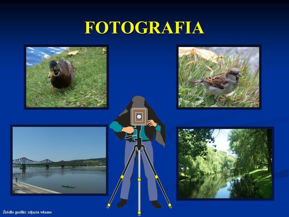 FOTOGRAFIA Źródło grafiki: zdjęcia własne