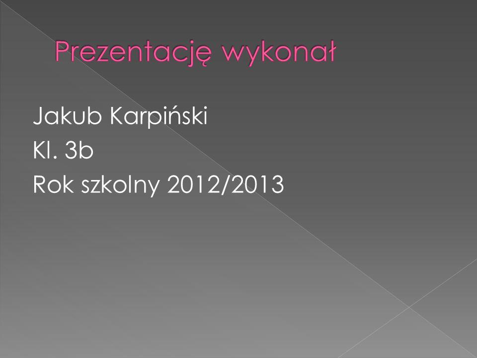 Prezentację wykonał Jakub Karpiński Kl. 3b Rok szkolny 2012/2013