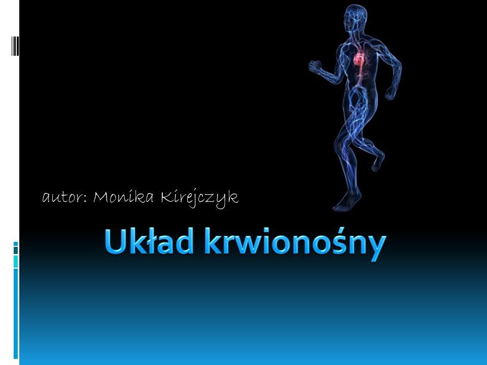 autor: Monika Kirejczyk