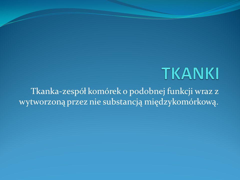 TKANKI Tkanka-zespół komórek o podobnej funkcji wraz z wytworzoną przez nie substancją międzykomórkową.