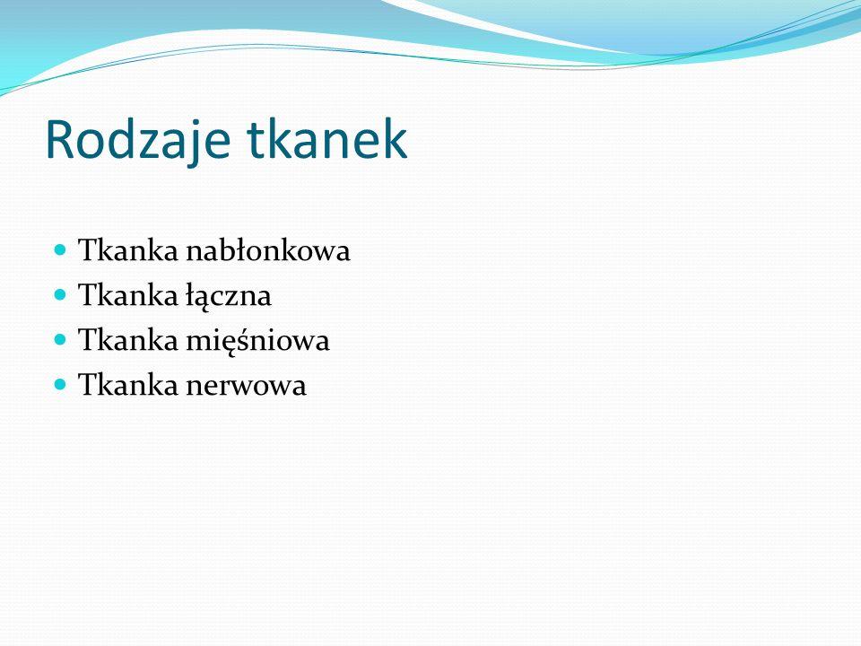 Rodzaje tkanek Tkanka nabłonkowa Tkanka łączna Tkanka mięśniowa