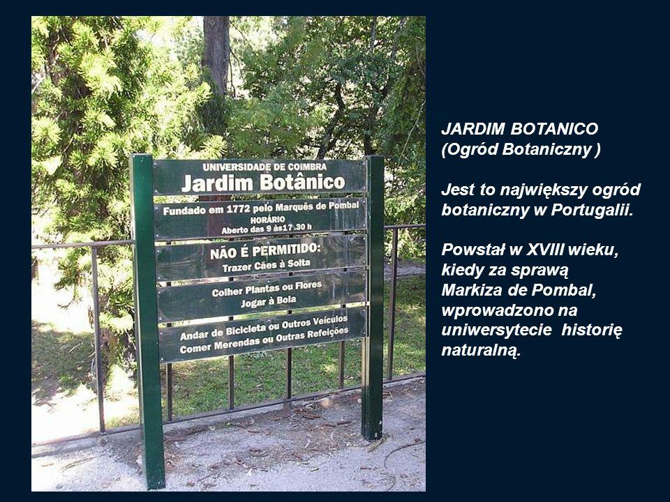 JARDIM BOTANICO (Ogród Botaniczny ) Jest to największy ogród. botaniczny w Portugalii. Powstał w XVIII wieku,