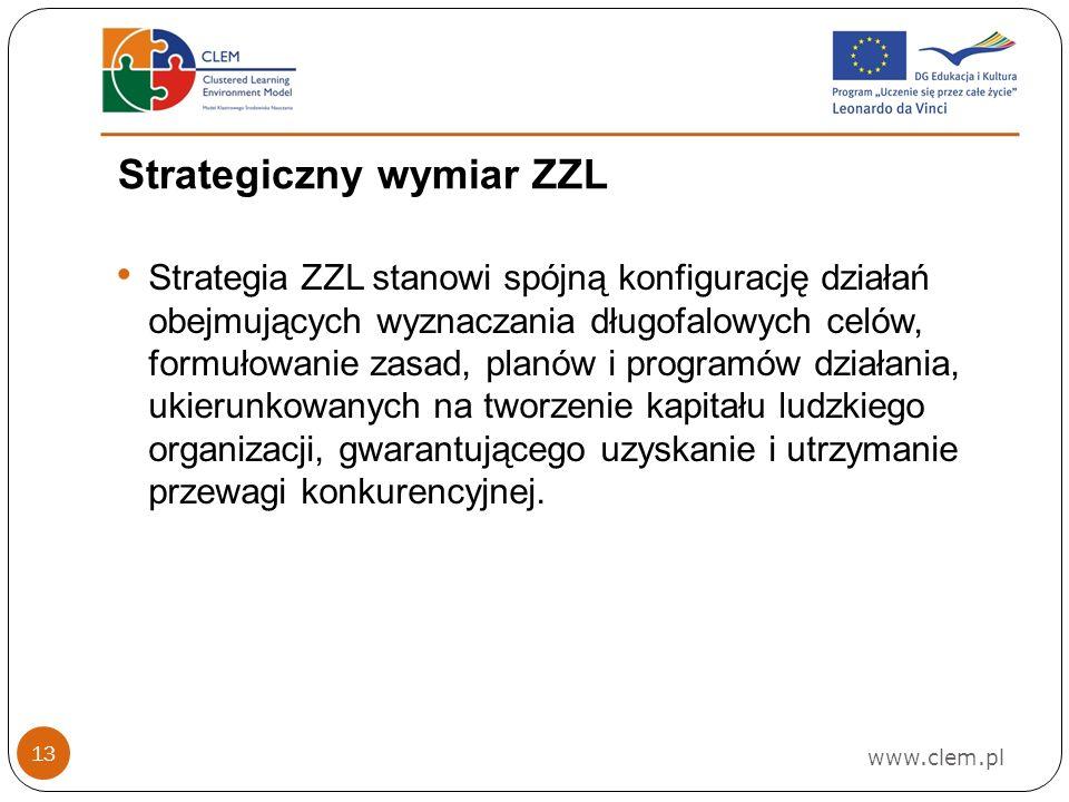 Strategiczny wymiar ZZL