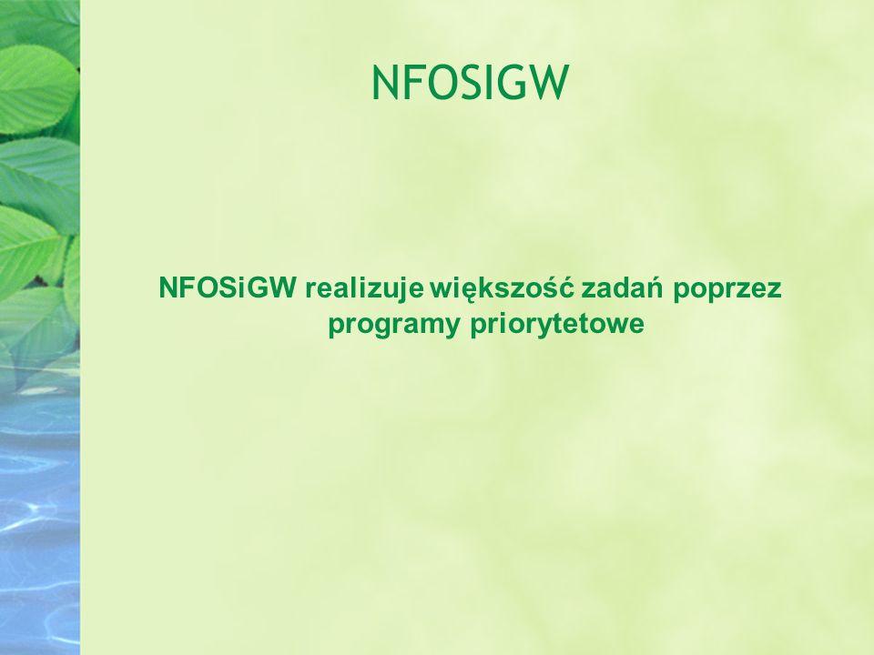 NFOSiGW realizuje większość zadań poprzez programy priorytetowe