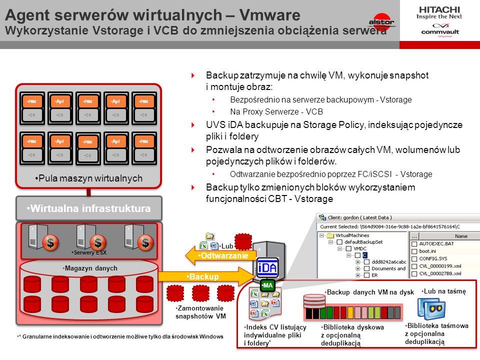 Wirtualna infrastruktura Virtual Infrastructure