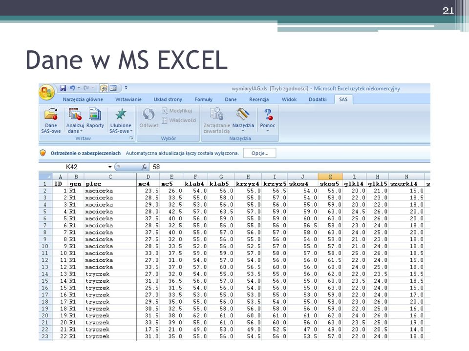 Dane w MS EXCEL