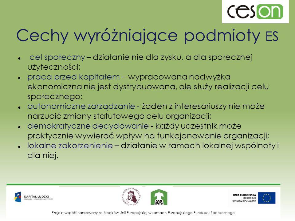 Cechy wyróżniające podmioty ES