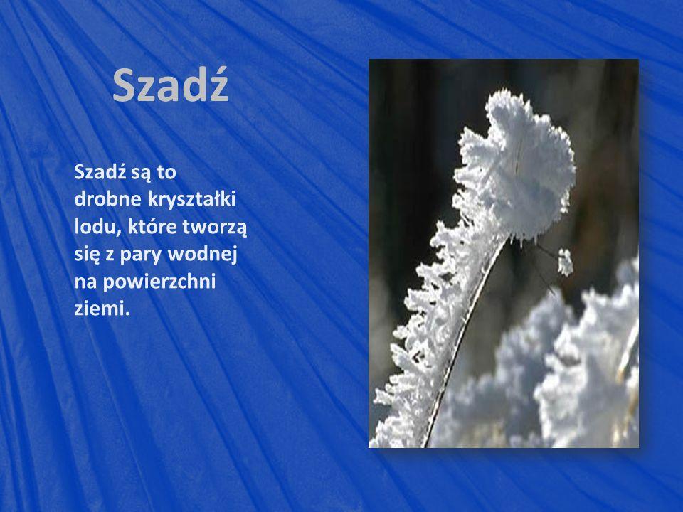 Szadź Szadź są to drobne kryształki lodu, które tworzą się z pary wodnej na powierzchni ziemi.