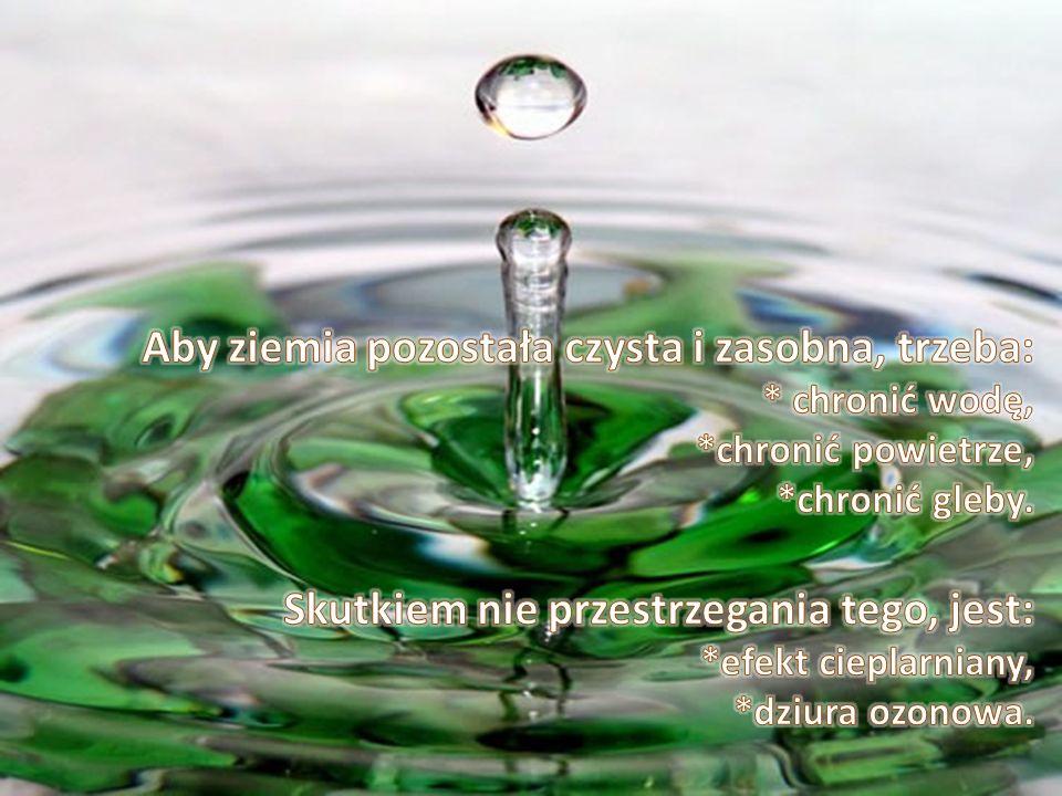 Aby ziemia pozostała czysta i zasobna, trzeba:. chronić wodę,