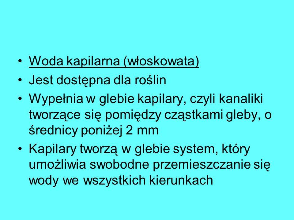 Woda kapilarna (włoskowata)