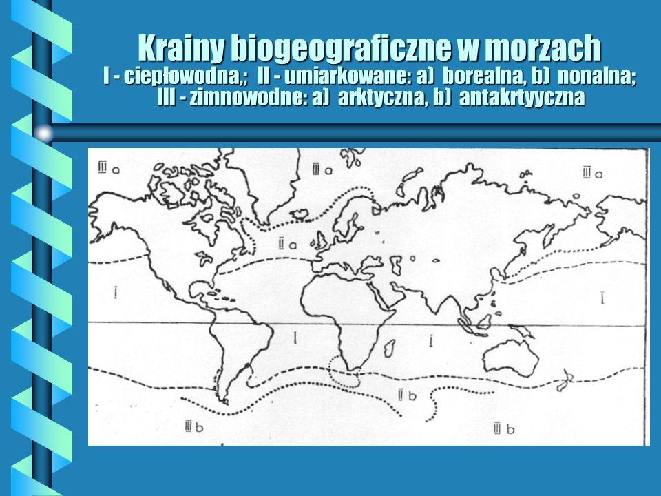 Krainy biogeograficzne w morzach I - ciepłowodna,; II - umiarkowane: a) borealna, b) nonalna; III - zimnowodne: a) arktyczna, b) antakrtyyczna