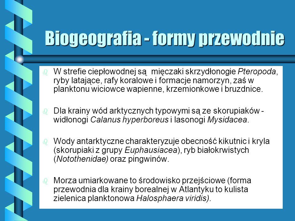 Biogeografia - formy przewodnie