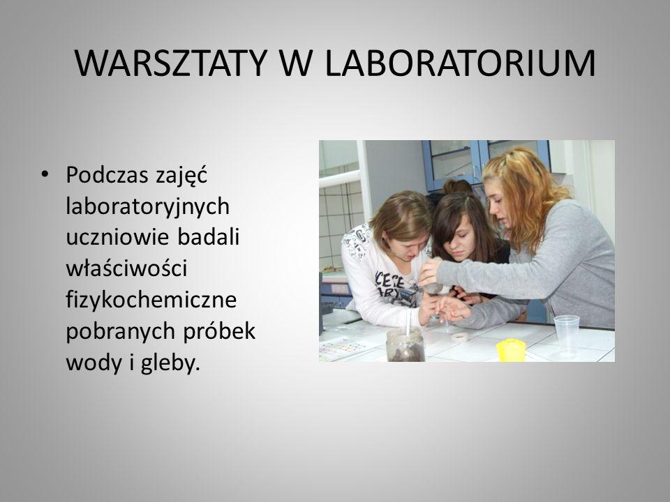 WARSZTATY W LABORATORIUM