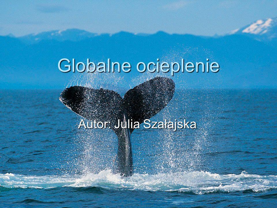 Autor: Julia Szałajska