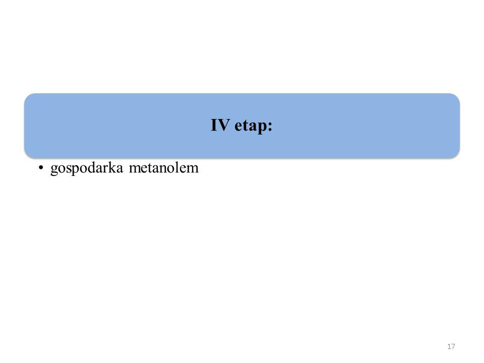 IV etap: gospodarka metanolem