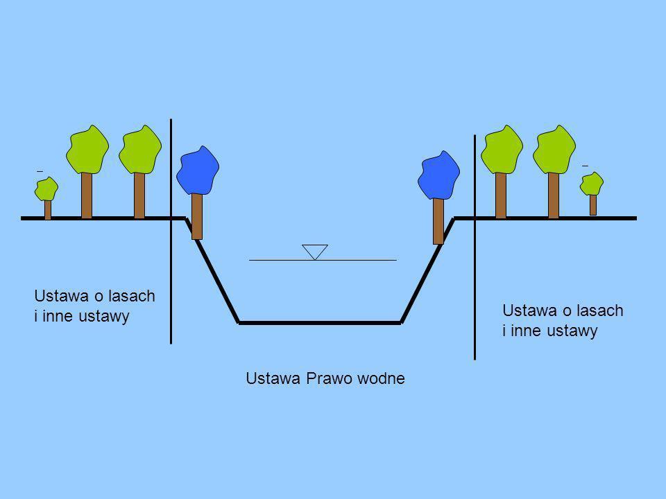 Ustawa o lasach i inne ustawy Ustawa o lasach i inne ustawy Ustawa Prawo wodne