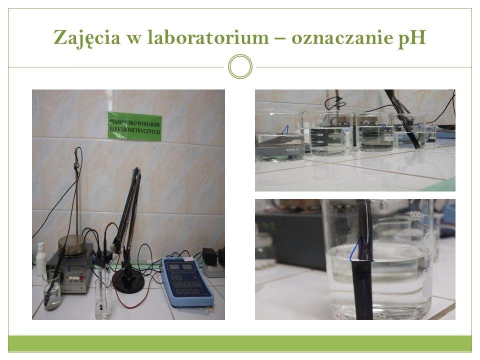 Zajęcia w laboratorium – oznaczanie pH