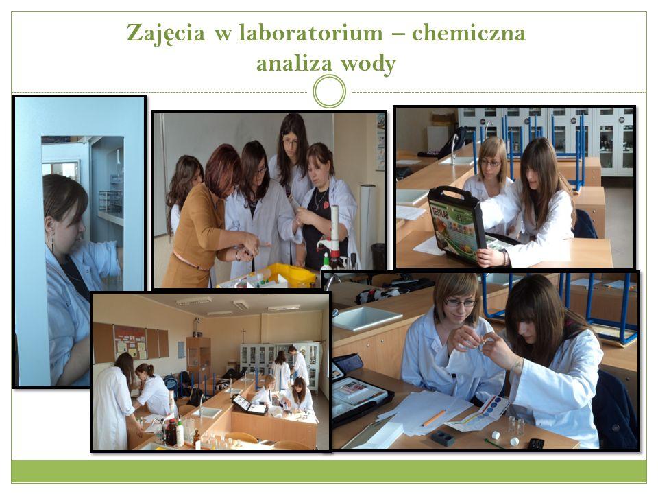 Zajęcia w laboratorium – chemiczna analiza wody