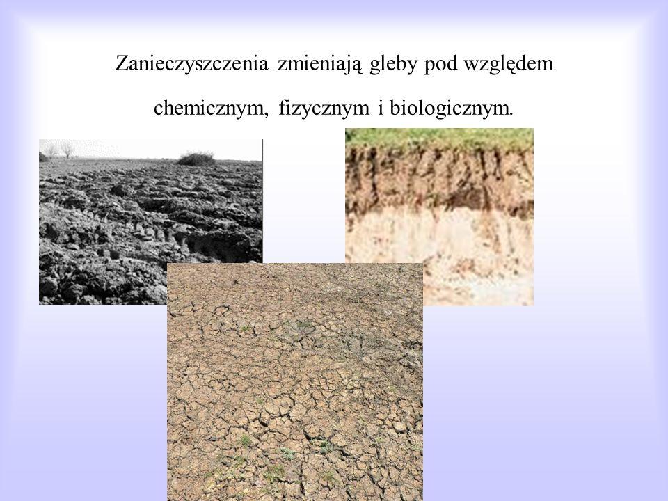 Zanieczyszczenia zmieniają gleby pod względem chemicznym, fizycznym i biologicznym.