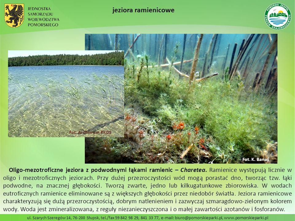 jeziora ramienicowe Fot. Archiwum PKDS. Fot. K. Banaś.