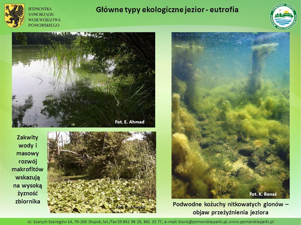 Podwodne kożuchy nitkowatych glonów – objaw przeżyźnienia jeziora