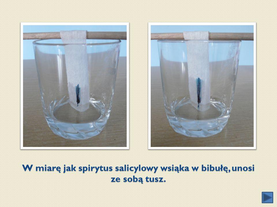 W miarę jak spirytus salicylowy wsiąka w bibułę, unosi ze sobą tusz.