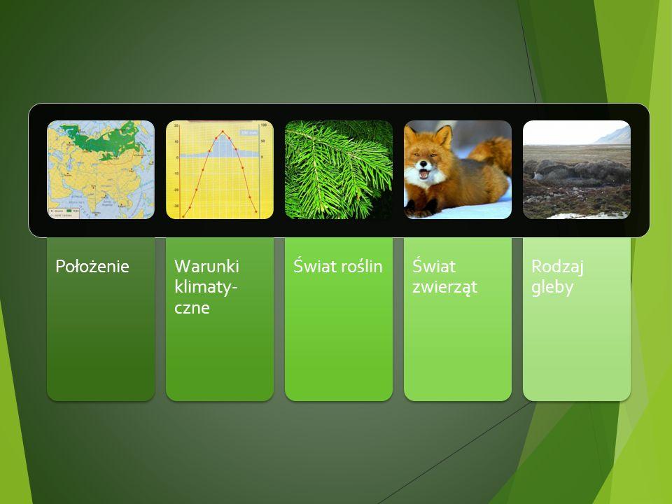 Położenie Warunki klimaty- czne Świat roślin Świat zwierząt Rodzaj gleby