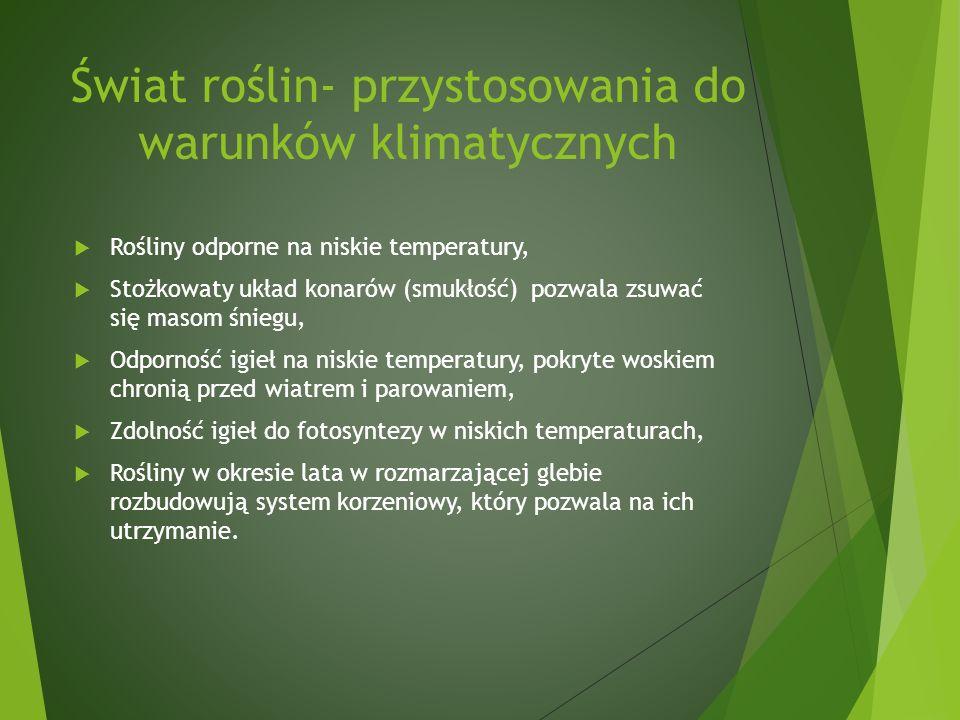 Świat roślin- przystosowania do warunków klimatycznych