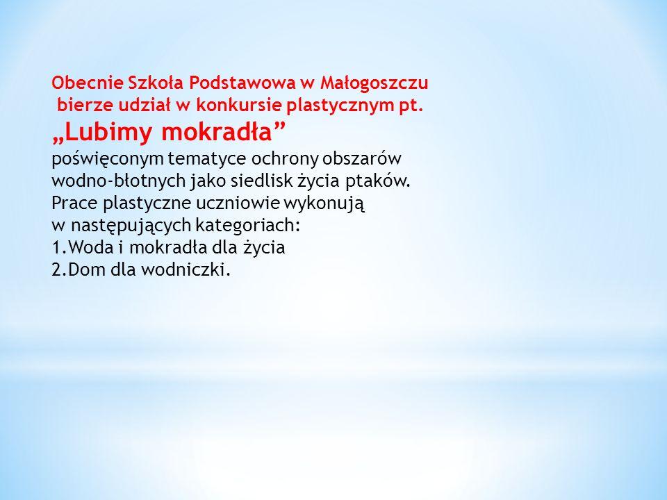 """""""Lubimy mokradła Obecnie Szkoła Podstawowa w Małogoszczu"""