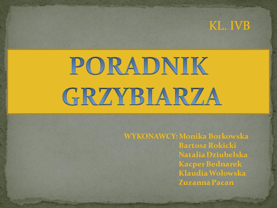 PORADNIK GRZYBIARZA KL. IVB WYKONAWCY: Monika Borkowska