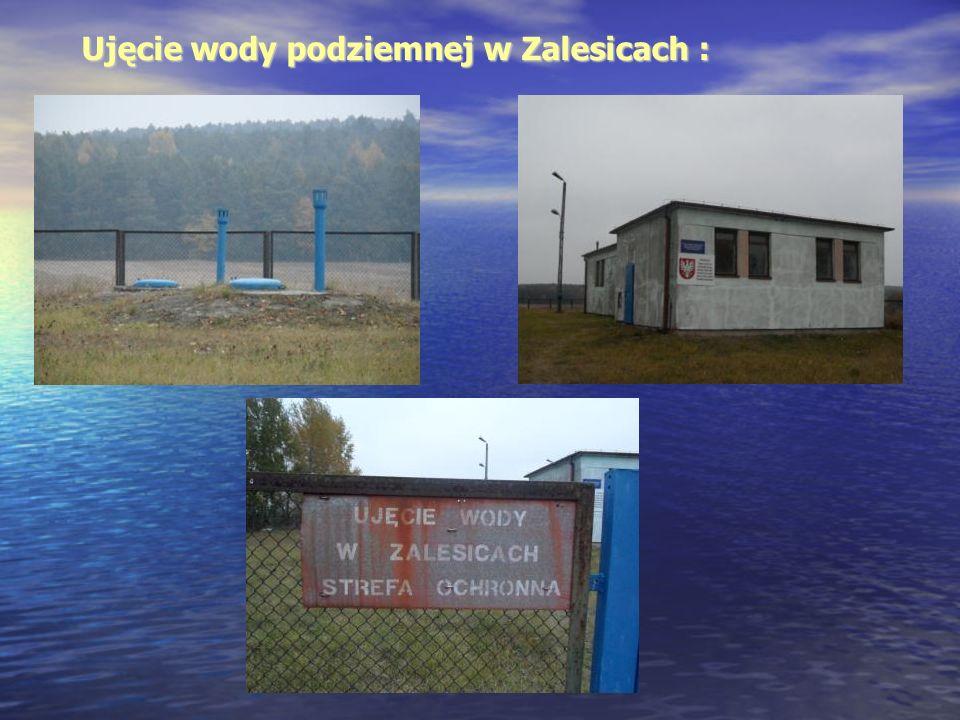 Ujęcie wody podziemnej w Zalesicach :