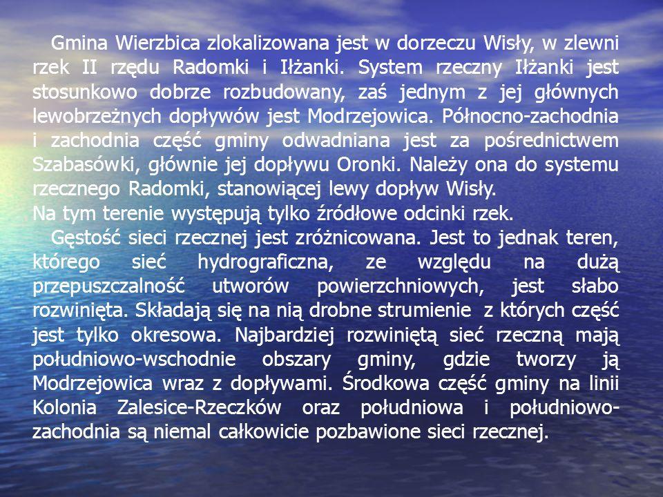 Gmina Wierzbica zlokalizowana jest w dorzeczu Wisły, w zlewni rzek II rzędu Radomki i Iłżanki. System rzeczny Iłżanki jest stosunkowo dobrze rozbudowany, zaś jednym z jej głównych lewobrzeżnych dopływów jest Modrzejowica. Północno-zachodnia i zachodnia część gminy odwadniana jest za pośrednictwem Szabasówki, głównie jej dopływu Oronki. Należy ona do systemu rzecznego Radomki, stanowiącej lewy dopływ Wisły.