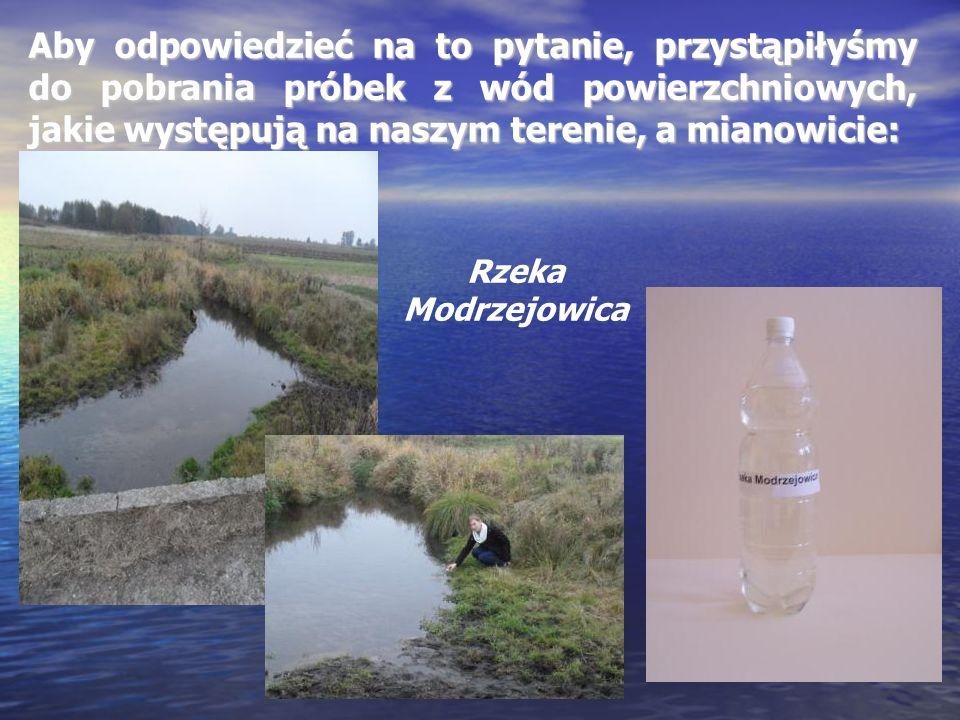 Aby odpowiedzieć na to pytanie, przystąpiłyśmy do pobrania próbek z wód powierzchniowych, jakie występują na naszym terenie, a mianowicie: