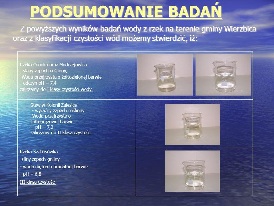 PODSUMOWANIE BADAŃ Z powyższych wyników badań wody z rzek na terenie gminy Wierzbica oraz z klasyfikacji czystości wód możemy stwierdzić, iż: