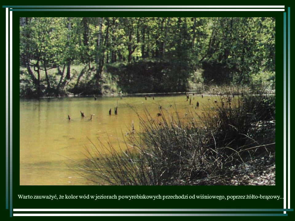 Warto zauważyć, że kolor wód w jeziorach powyrobiskowych przechodzi od wiśniowego, poprzez żółto-brązowy...