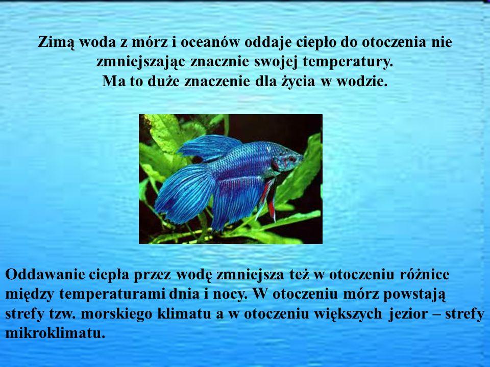 Ma to duże znaczenie dla życia w wodzie.