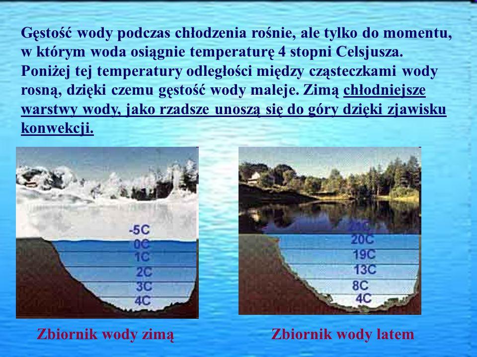 Gęstość wody podczas chłodzenia rośnie, ale tylko do momentu, w którym woda osiągnie temperaturę 4 stopni Celsjusza. Poniżej tej temperatury odległości między cząsteczkami wody rosną, dzięki czemu gęstość wody maleje. Zimą chłodniejsze warstwy wody, jako rzadsze unoszą się do góry dzięki zjawisku konwekcji.