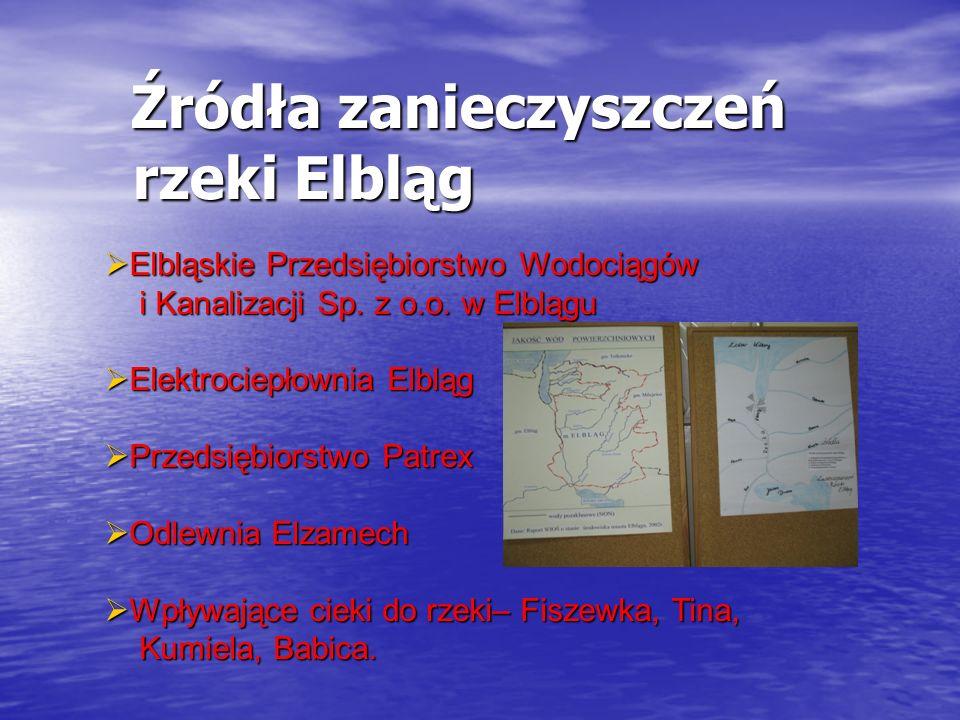 Źródła zanieczyszczeń rzeki Elbląg