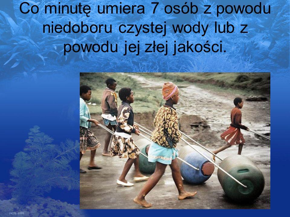 Co minutę umiera 7 osób z powodu niedoboru czystej wody lub z powodu jej złej jakości.