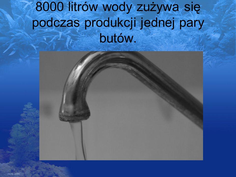 8000 litrów wody zużywa się podczas produkcji jednej pary butów.