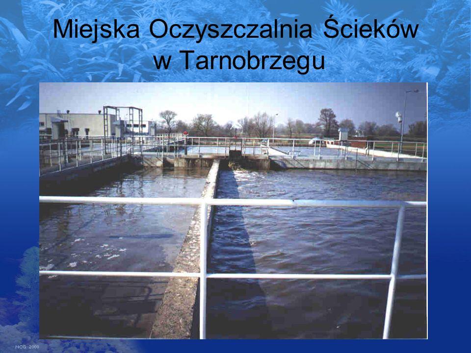 Miejska Oczyszczalnia Ścieków w Tarnobrzegu