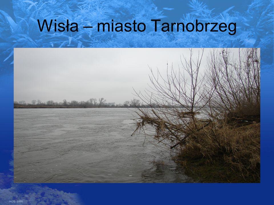Wisła – miasto Tarnobrzeg