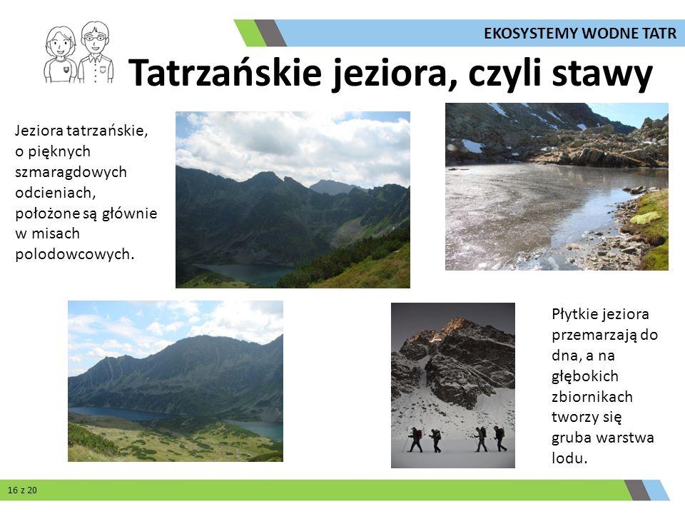 Tatrzańskie jeziora, czyli stawy