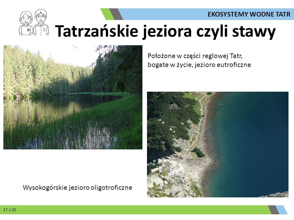 Tatrzańskie jeziora czyli stawy