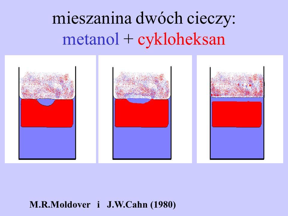 mieszanina dwóch cieczy: metanol + cykloheksan