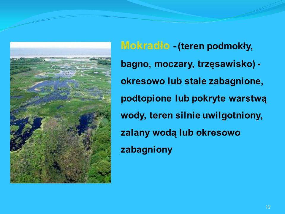 Mokradło - (teren podmokły, bagno, moczary, trzęsawisko) - okresowo lub stale zabagnione, podtopione lub pokryte warstwą wody, teren silnie uwilgotniony, zalany wodą lub okresowo zabagniony